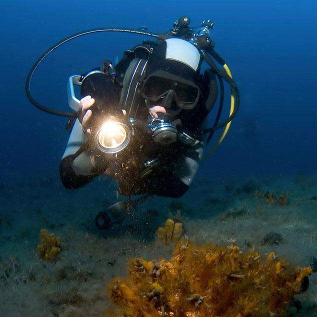 L'éclairage de plongée